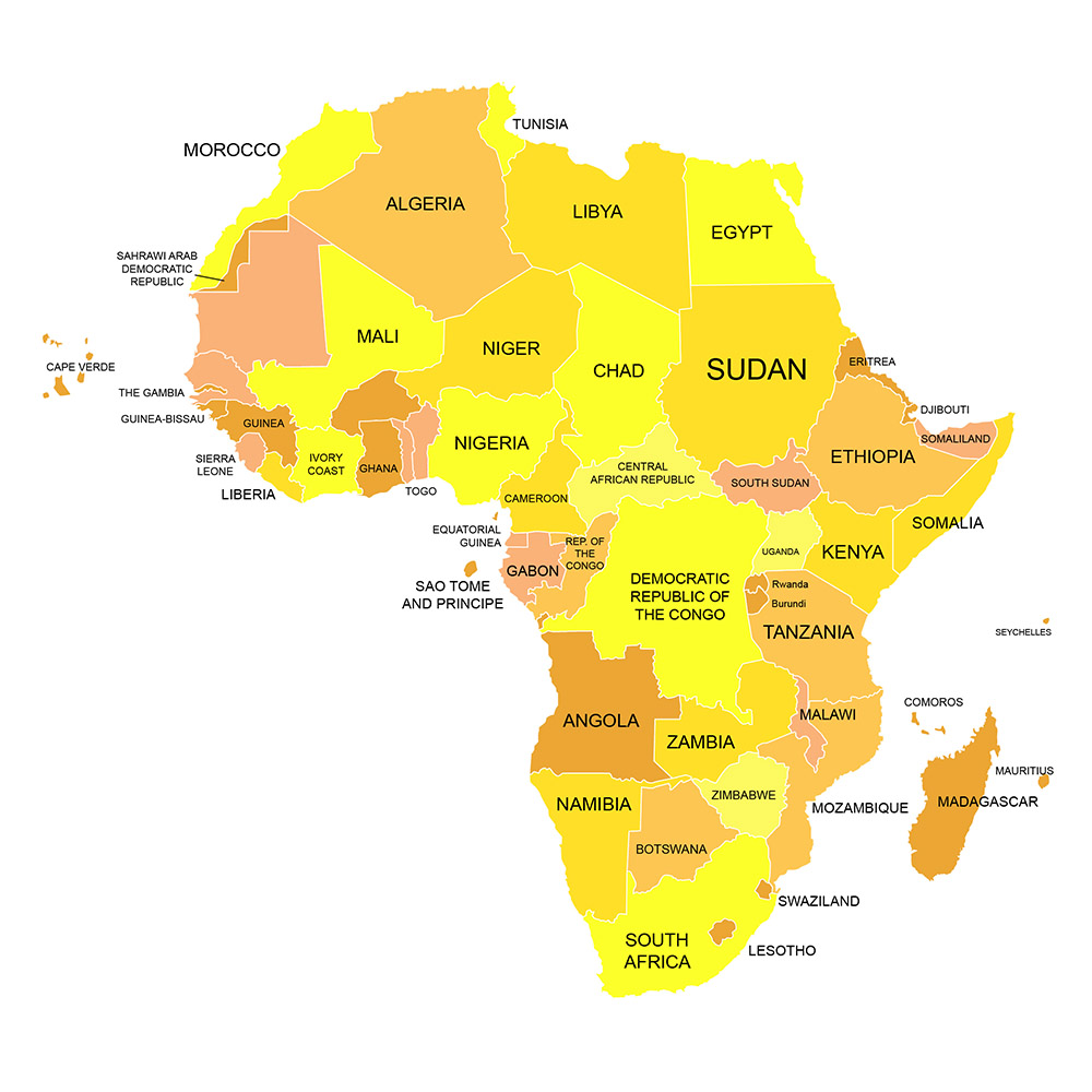 Vector Map of Africa - Vector Conversion Service